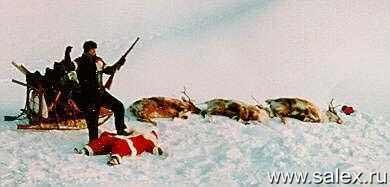 охотники завалили деда Мороза с его оленями