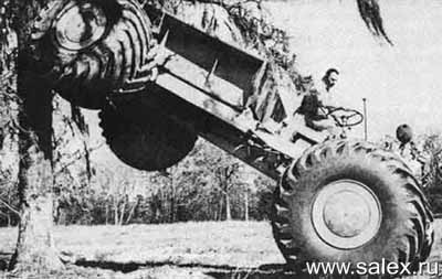 трактор въехал на дерево