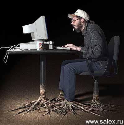 http://www.salex.ru/fun/pictures/fot_j041.jpg